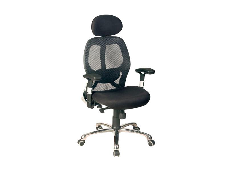 Cadeira Bolonha - Presidente